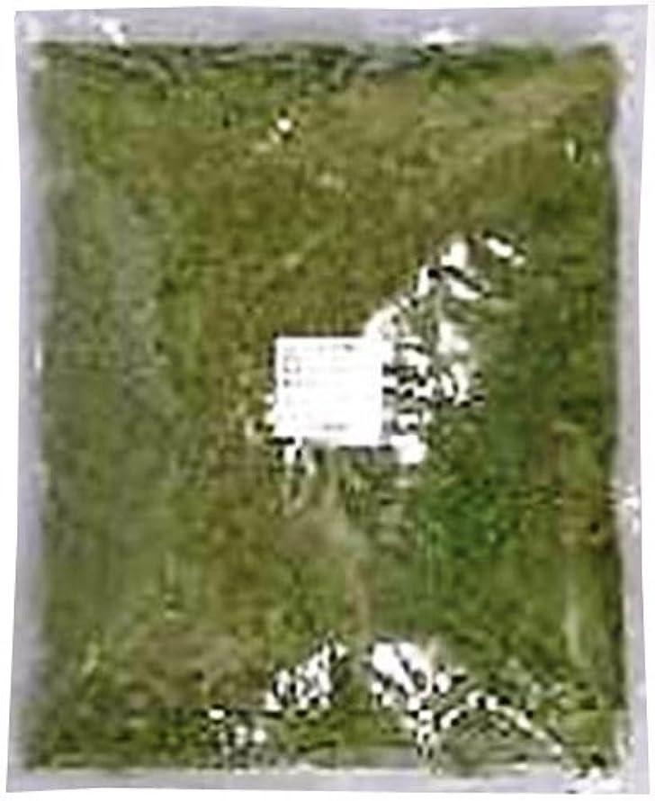 栄光の軍団染色パセリ (みじん切り) (袋) 1kg