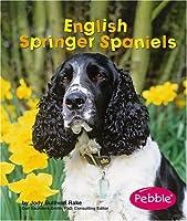 English Springer Spaniels (Pebble Books: Dogs)
