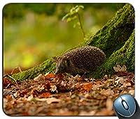 ハリネズミの動物は秋の木のコケ99911パーソナライズされた長方形のマウスパッド、印刷された滑り止めゴム快適なカスタマイズされたコンピューターマウスパッドマウスマットマウスパッド
