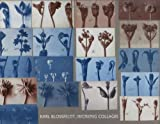Karl Blossfeldt: Working Collages (MIT Press) 画像