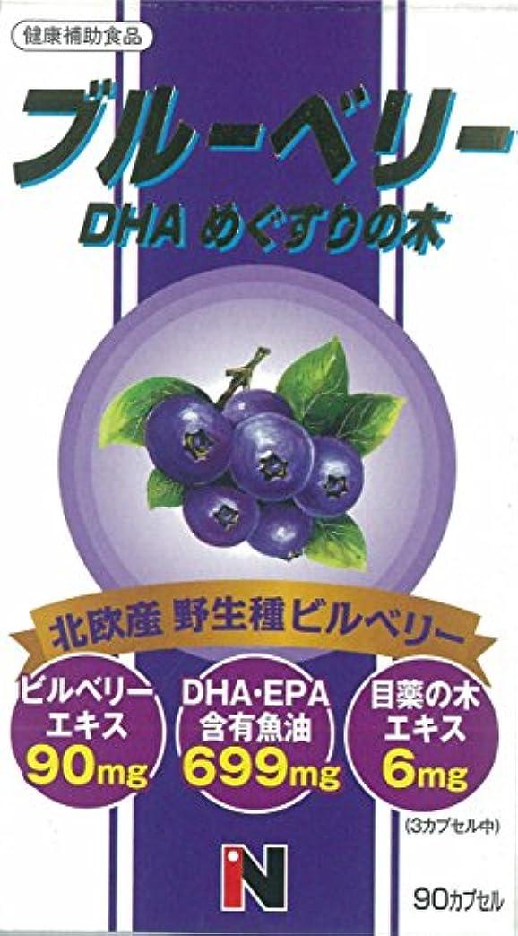 安定したいつか衝動ブルーベリー+DHA+メグスリの木混合 450mg×90粒