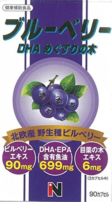 測定ラジカル魔女ブルーベリー+DHA+メグスリの木混合 450mg×90粒