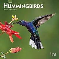 Hummingbirds 2020 Calendar