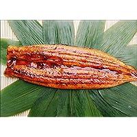 【小針水産】 特大うなぎ(280g前後) 鰻(うなぎ) 蒲焼 1尾姿 [タレ・山椒 付] 1枚中国産