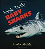 Tough, Toothy Baby Sharks