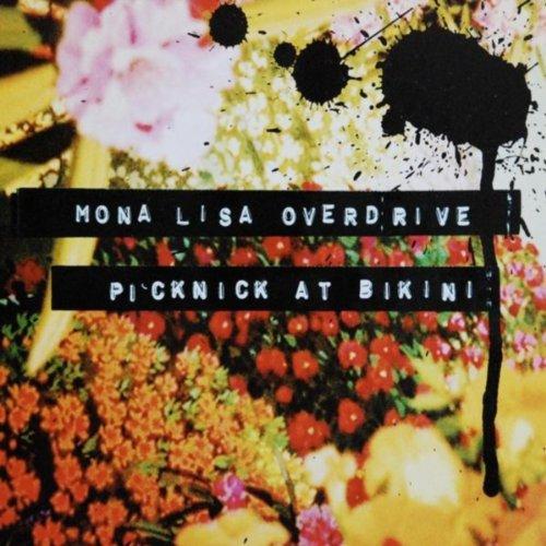 picknick at bikini
