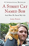 A Street Cat Named Bob: And How He Saved My Life (Wheeler Publishing large print)