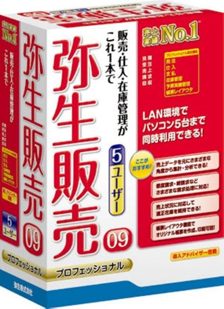 栄光の文明化する自分の力ですべてをする【旧商品】弥生販売 09 プロフェッショナル 5ユーザー