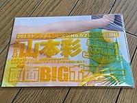 山本彩両面BIGポスター ヤングチャンピオンNo.6 プレミアム付録 NMB48