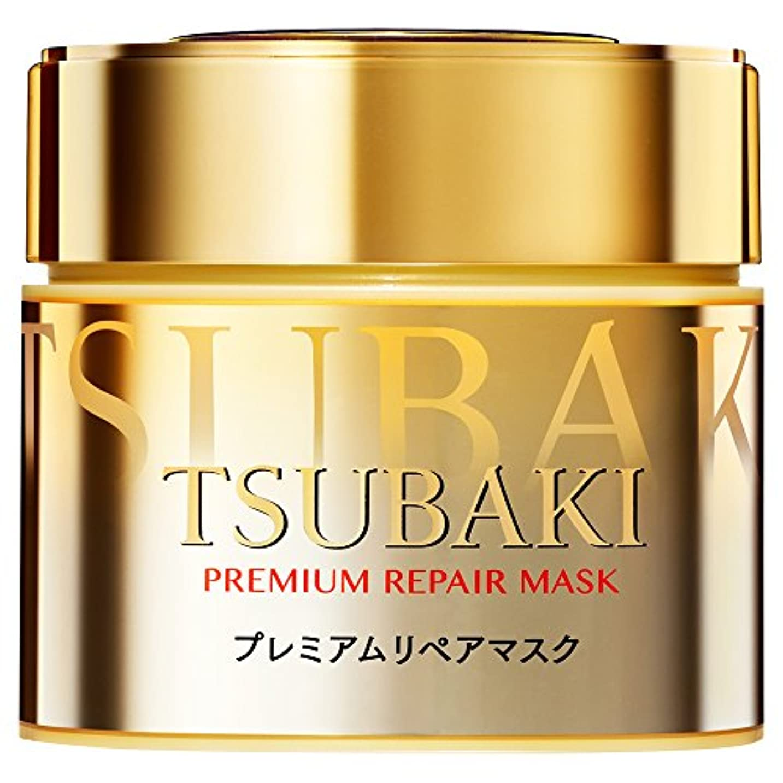 人類衣装虫TSUBAKI プレミアムリペアマスク 180g