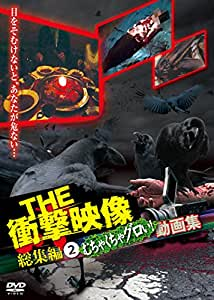 THE 衝撃映像 総集編(2) むちゃくちゃグロい!動画集 [DVD]