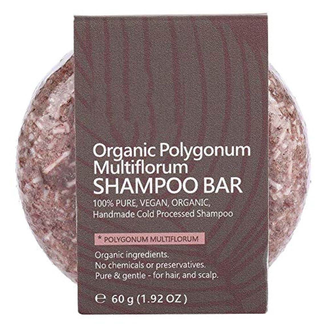 黙認する大きいロゴシャンプーバーヘアコンディショナーナチュラル植物エキスエッセンシャルオイルヘアシャンプーソープナイトシャンプーヘアトリートメント (ポリゴンム)