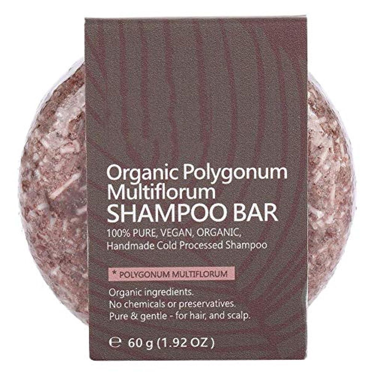 ポルノ未接続ミルクシャンプーバーヘアコンディショナーナチュラル植物エキスエッセンシャルオイルヘアシャンプーソープナイトシャンプーヘアトリートメント (ポリゴンム)