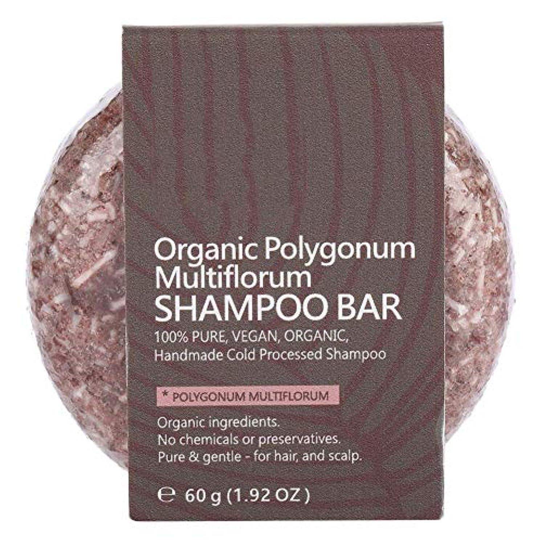リーズ影響を受けやすいです悲しいシャンプーバーヘアコンディショナーナチュラル植物エキスエッセンシャルオイルヘアシャンプーソープナイトシャンプーヘアトリートメント (ポリゴンム)