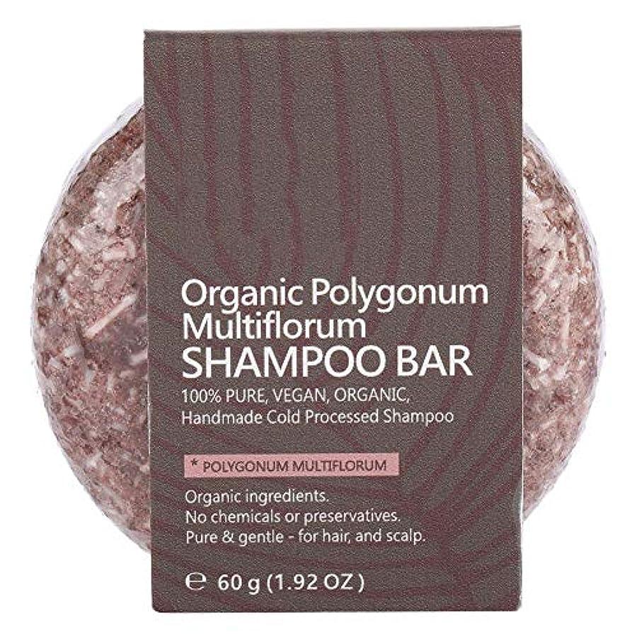 予算くそー名前でシャンプーバーヘアコンディショナーナチュラル植物エキスエッセンシャルオイルヘアシャンプーソープナイトシャンプーヘアトリートメント (ポリゴンム)