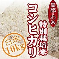 新米 【精米】 富山のエコファーマー 林農産 特別栽培米 コシヒカリ (10kg) 白米 平成30年度 富山県産