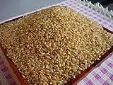 H24年度産米 北海道産 ななつぼし 玄米 30kg