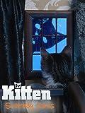 Kitten TV - Scaredy Cats