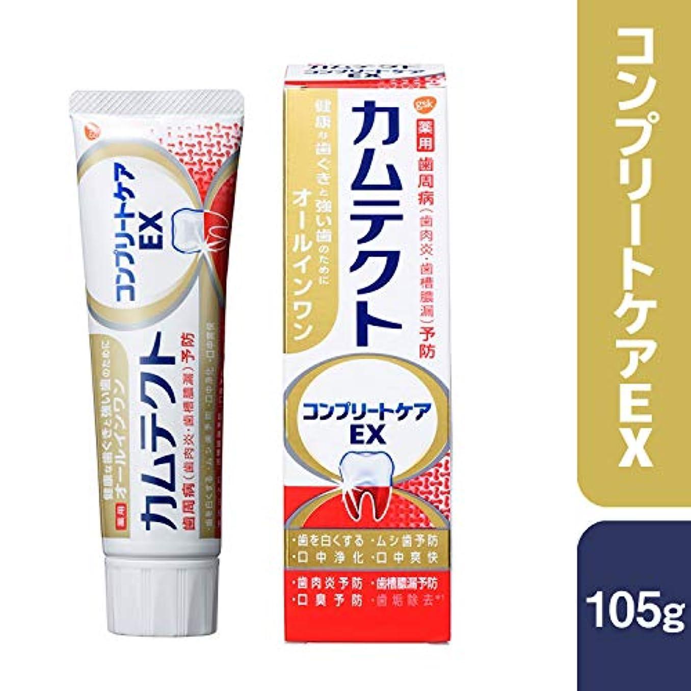 キャッシュ助けてカウントアップカムテクト コンプリートケアEX 歯周病(歯肉炎?歯槽膿漏) 予防 歯磨き粉 105g