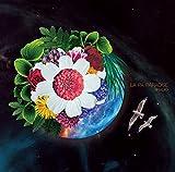 LA PA PARADISE(初回限定盤)[CD+DVD]