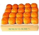 新潟県佐渡島産 農協規格 おけさ柿 秀品贈答用 渋抜き済み  たねなし 高糖度 はずれ無し