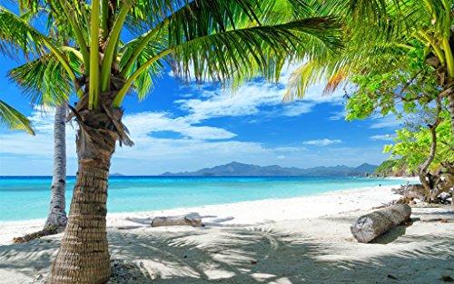 夏のビーチ、砂浜、ヤシの木 キャンバスの 写真 ポスター 印刷 海 - 特大 (120cmx80cm)