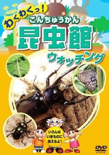 昆虫館 こんちゅうかん ウォッチング KID-1404 [DVD]