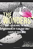 The Wonders: That lies behind the ideal barriers of fear that only exists in your mind (First)