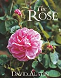 The Rose 画像