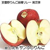 安曇野りんご サンふじ 【6玉/化粧箱入】