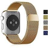 Fintie Apple Watchベルト マグネットロック設計 ステンレス留め金製 42mmメッシュバンド アップルウォッチストラップ for Apple Watch 42mm All Models (No Buckle Needed)- ブラスゴールド