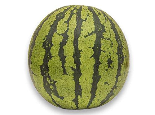 フルーツなかやま 熊本産 西瓜 6�s以上 1個入 大きさ18�p以上