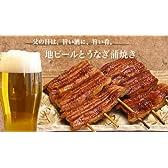 【父の日】 国産うなぎ串蒲焼と浜松地ビールセット