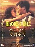 風の輝く朝に [DVD]