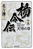 楊令伝 15 天穹の章 (集英社文庫) 画像