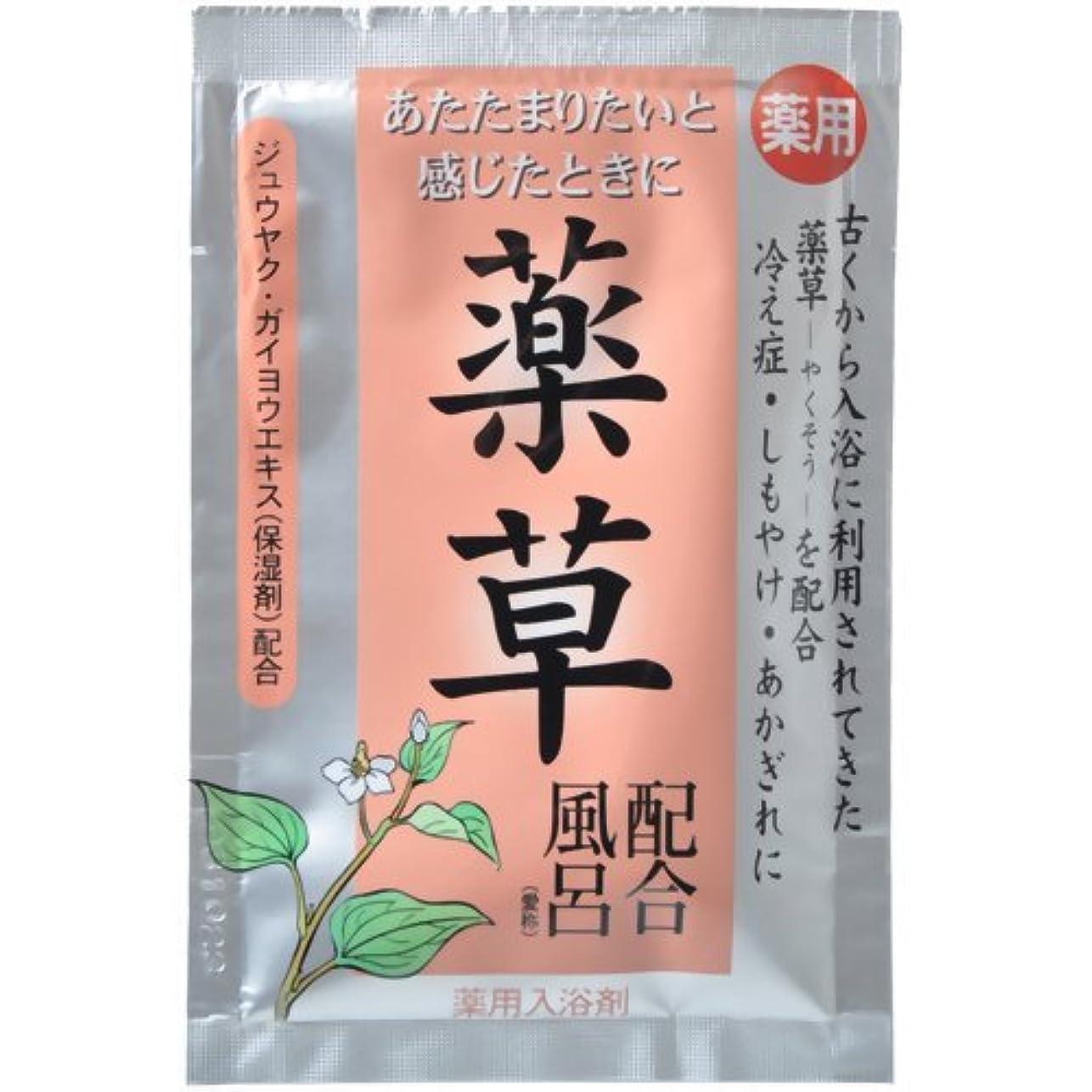 強調する騙す慈悲深い古風植物風呂 薬草配合風呂 25g(入浴剤)