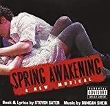 Spring Awakening: A New Musical 画像