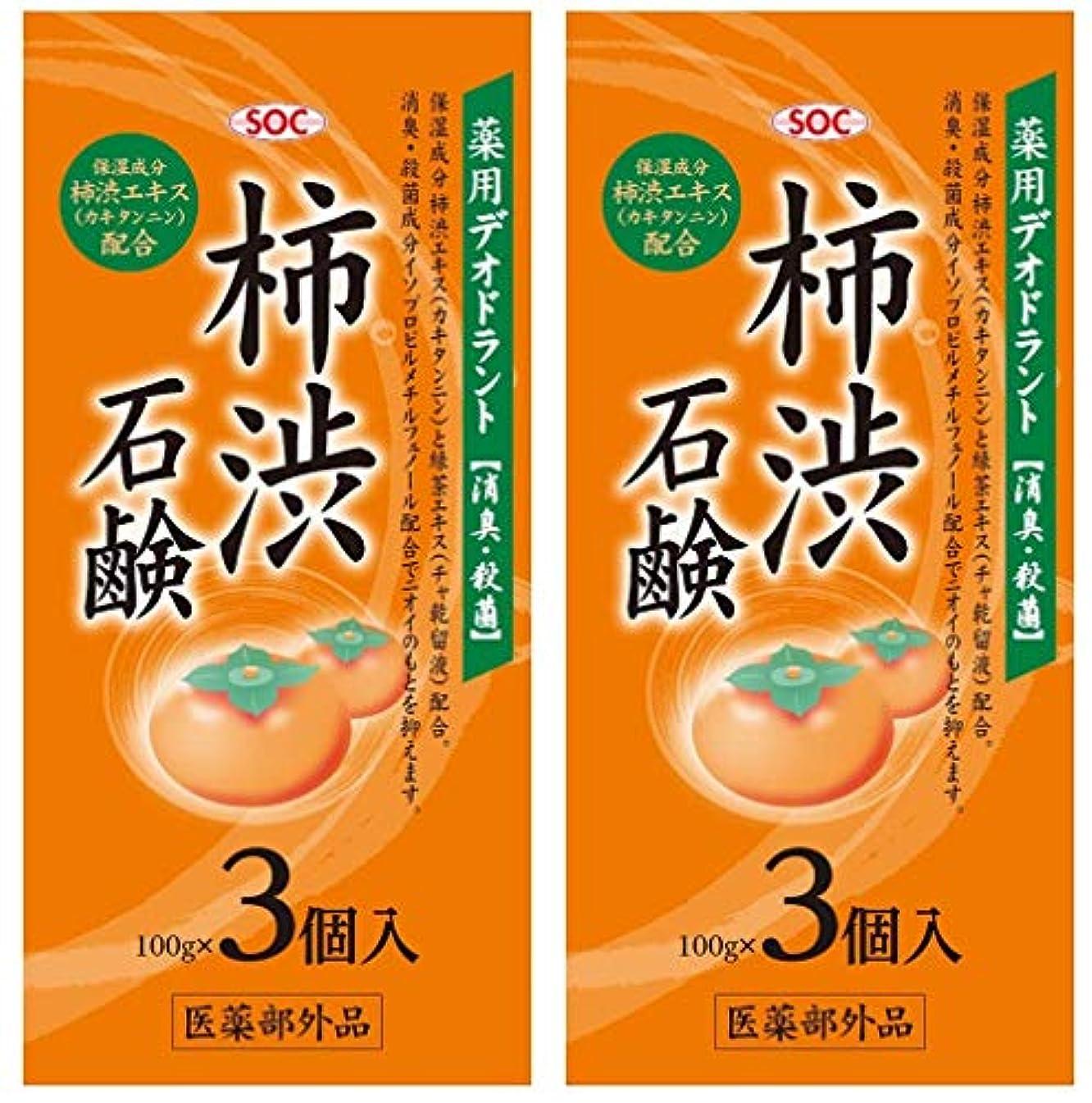 ジャンル草ファシズムSOC 薬用柿渋石鹸 3P (100g×3) 2セット