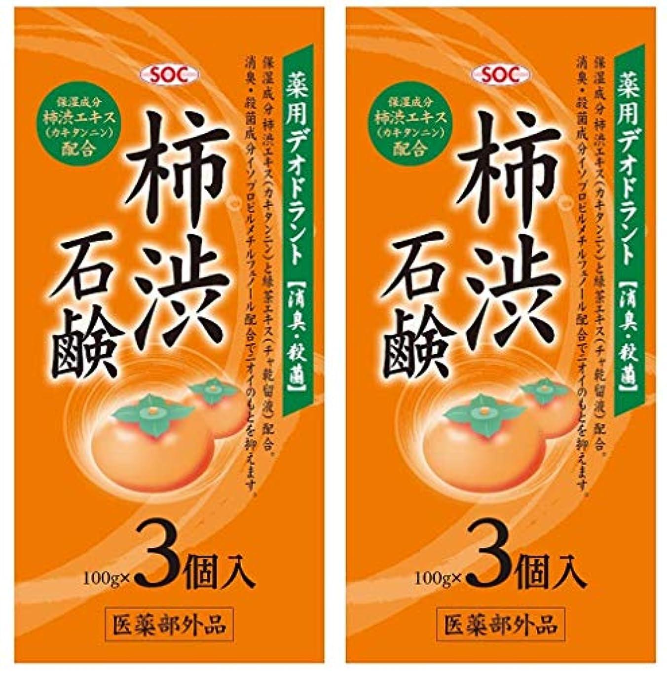 買い物に行くゴミ箱を空にする安定SOC 薬用柿渋石鹸 3P (100g×3) 2セット