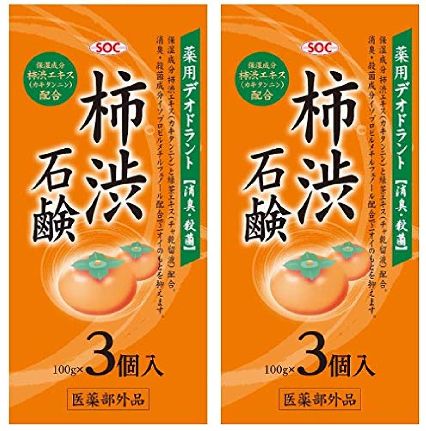 単調な一緒に時間SOC 薬用柿渋石鹸 3P (100g×3) 2セット