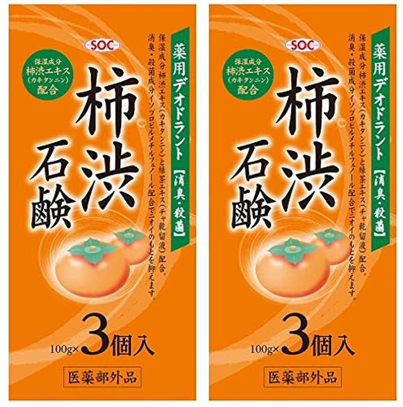 雨測る形SOC 薬用柿渋石鹸 3P (100g×3) 2セット