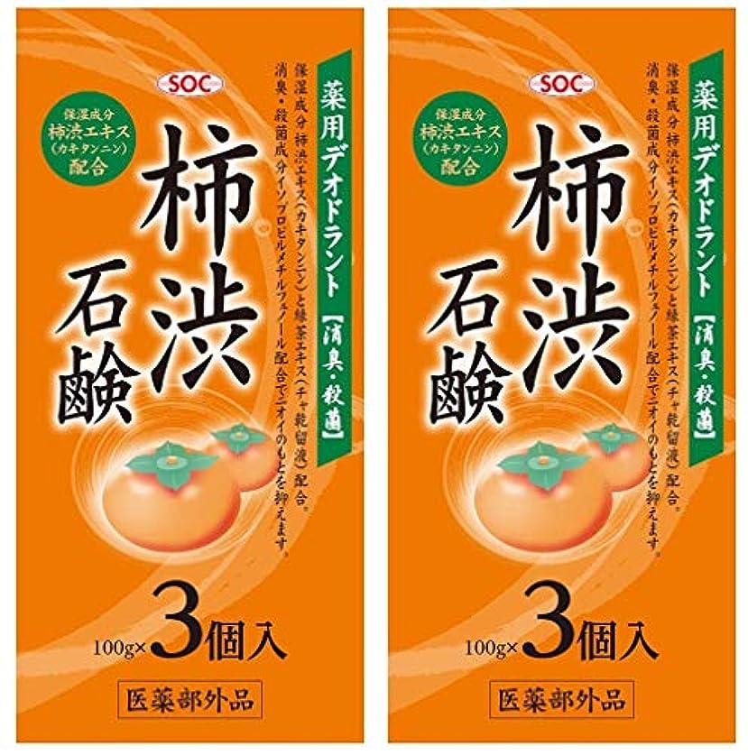 パパ普遍的な持つSOC 薬用柿渋石鹸 3P (100g×3) 2セット