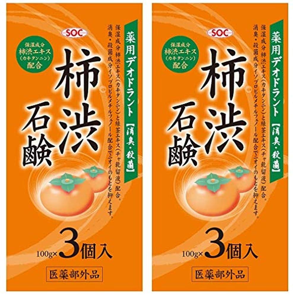 損傷綺麗な今晩SOC 薬用柿渋石鹸 3P (100g×3) 2セット