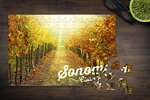 ソノマ郡、カリフォルニア–Morning In The Vineyard(12x 18プレミアムアクリルパズル、130ピース)
