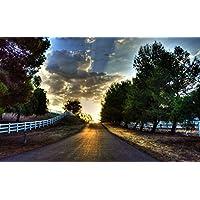 日没、道路、木、フェンス、空、雲 キャンバスの 写真 ポスター 印刷 旅行 風景 景色 - (105cmx70cm)