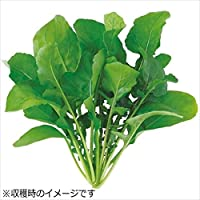 ユーイング 水耕栽培器 Green Farm グリーンファーム 水耕栽培種子 ルッコラ 5袋セット UH-BC02-5SET