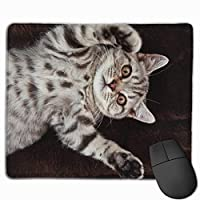 Cheng xiao Mouse Pad Cute British Shorthair Cat Rectangle Rubber Mousepad Non-toxic Print Gaming Mouse Pad with Black Lock Edge,9.8 * 11.8 in,ベーシック マウスパッド ゲーム用 標準サイズ