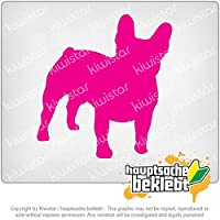 フランスのブルドッグ犬 French Bulldogge dog 10cm x 10cm 15色 - ネオン+クロム! ステッカービニールオートバイ