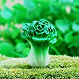 micro landscape decor mini chinese cabbage eco bottle landscaping