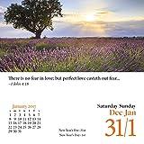 ターナー写真2017Bible VersesフォトDaily Boxedカレンダー(17998970006) 画像